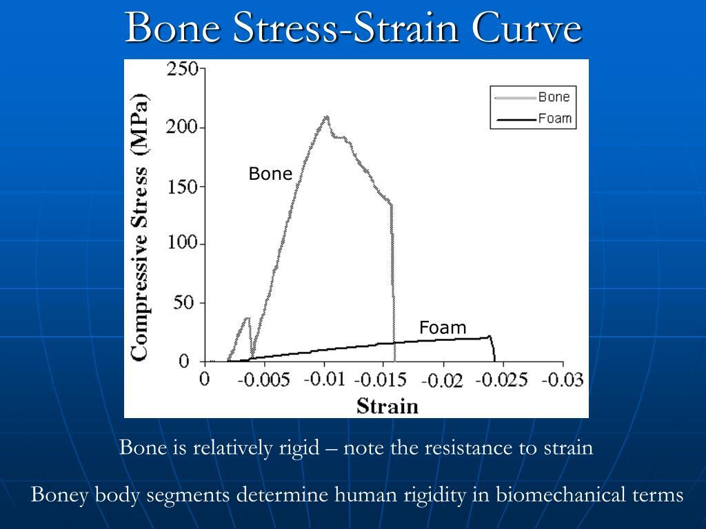 Bone Stress-Strain Curve