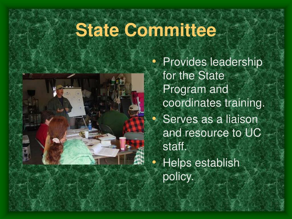 State Committee