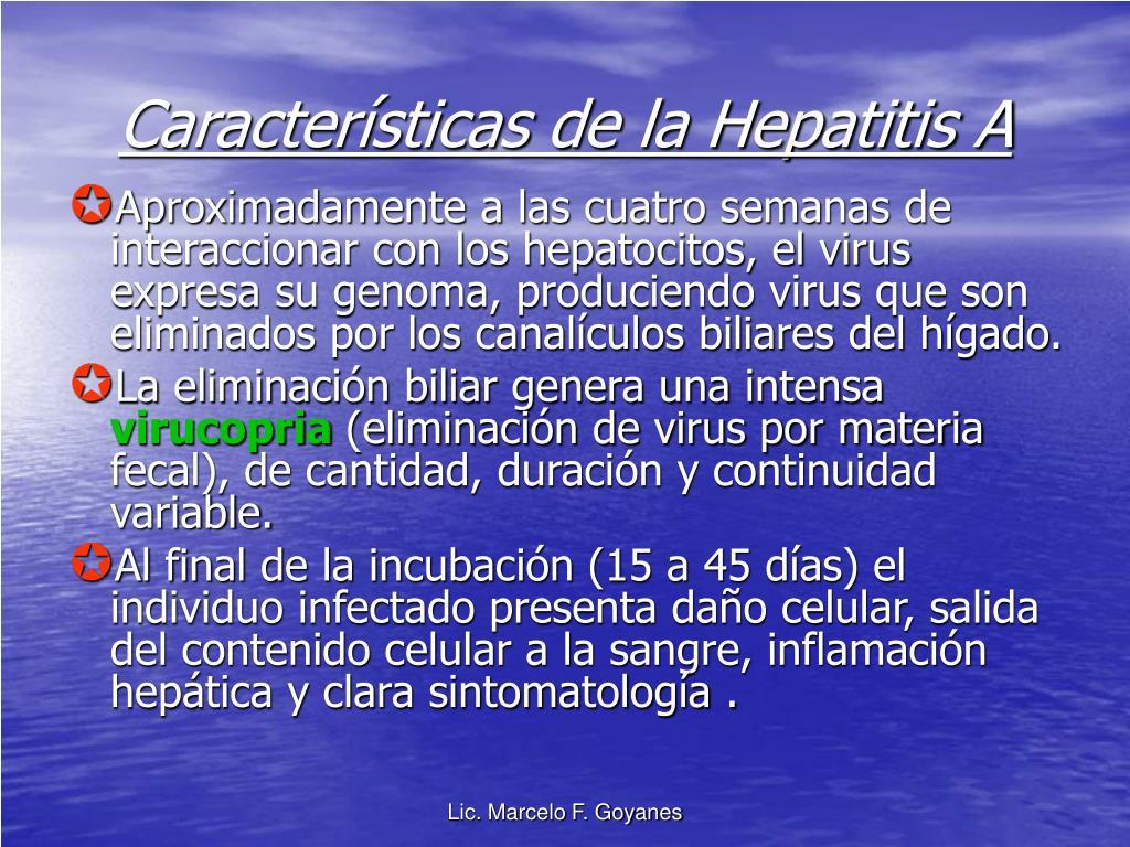 Características de la Hepatitis A