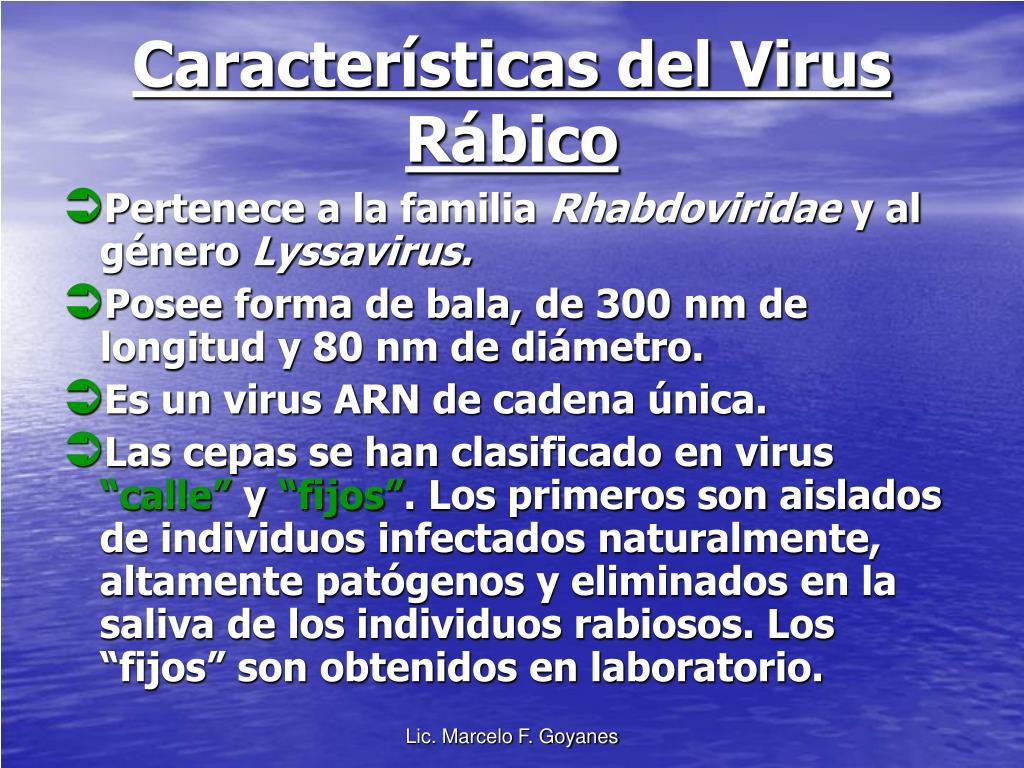 Características del Virus Rábico