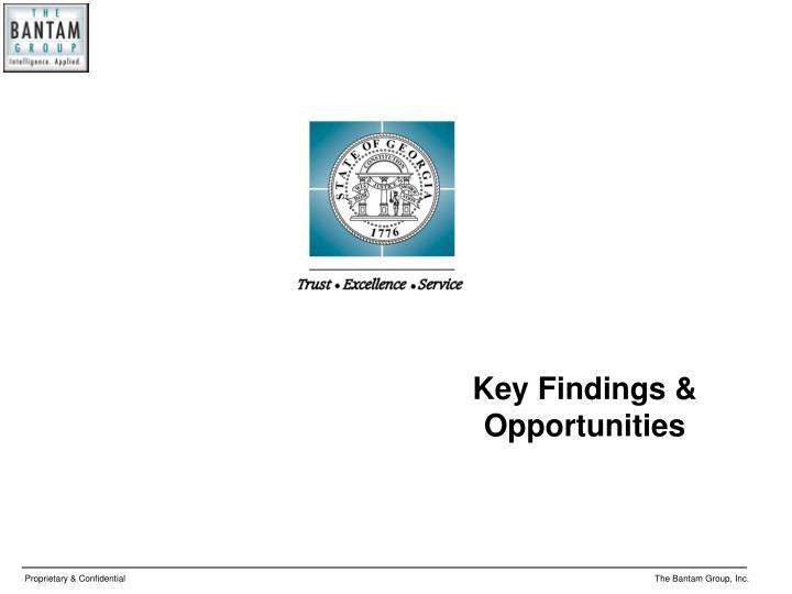 Key Findings & Opportunities