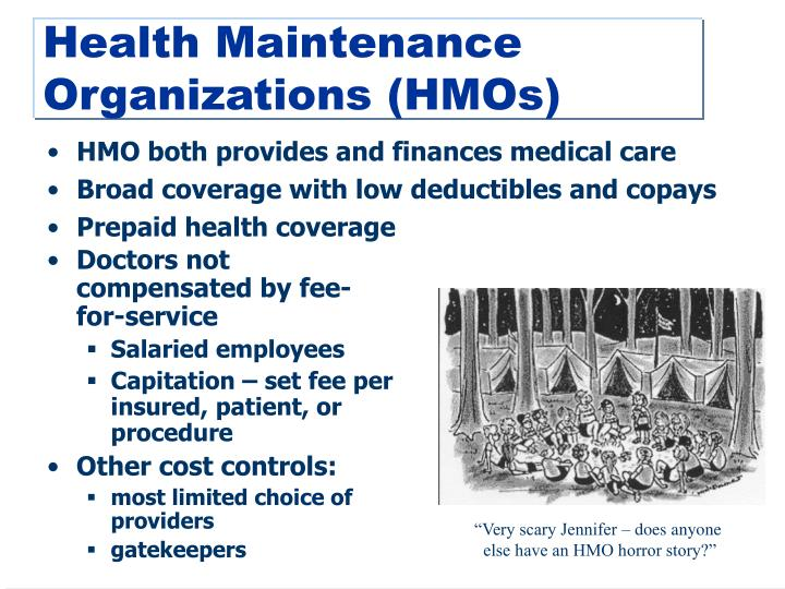 HMO both provides and finances medical care