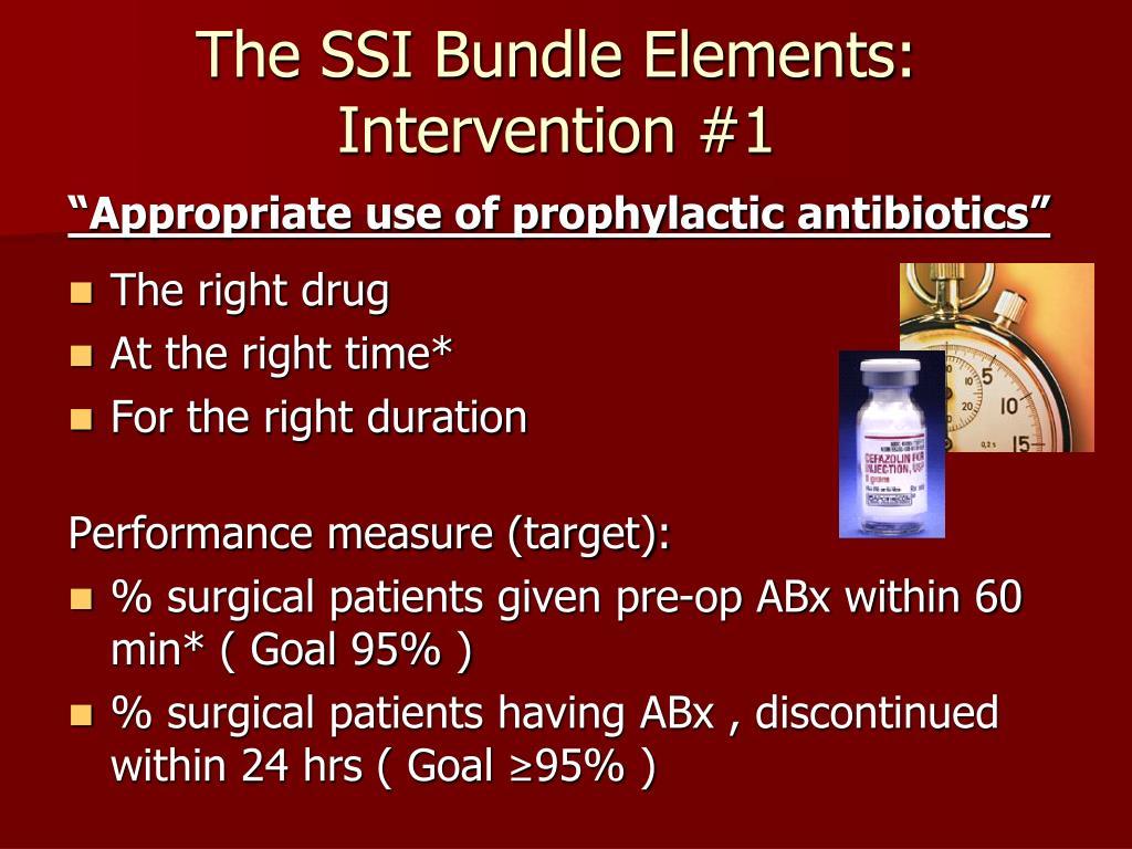 The SSI Bundle Elements: