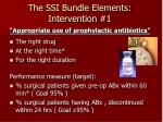 the ssi bundle elements intervention 1