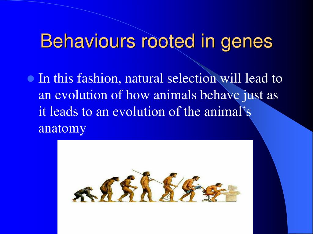 Behaviours rooted in genes