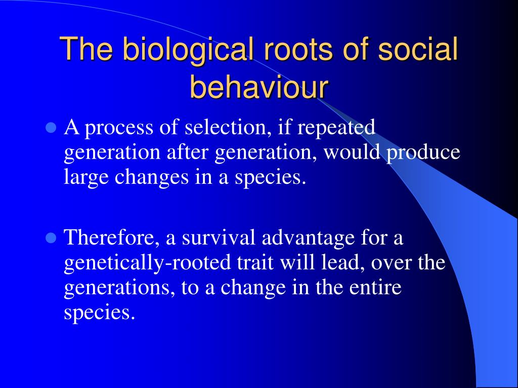 The biological roots of social behaviour