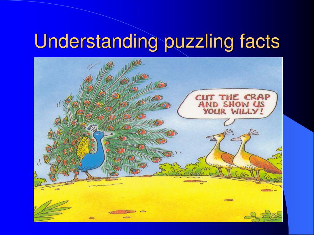 Understanding puzzling facts