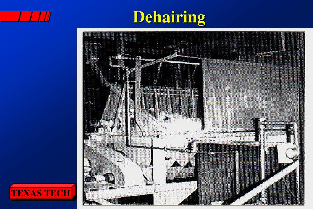 Dehairing