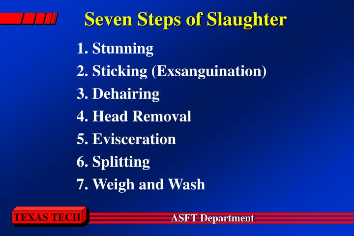 Seven Steps of Slaughter