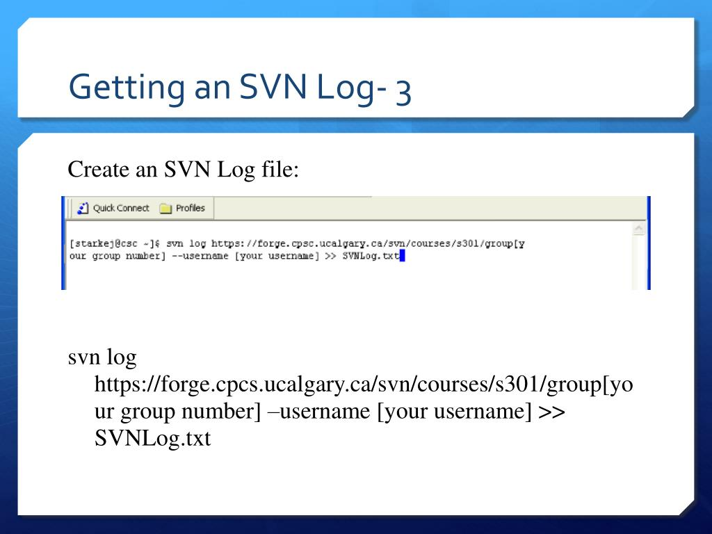 Getting an SVN Log- 3