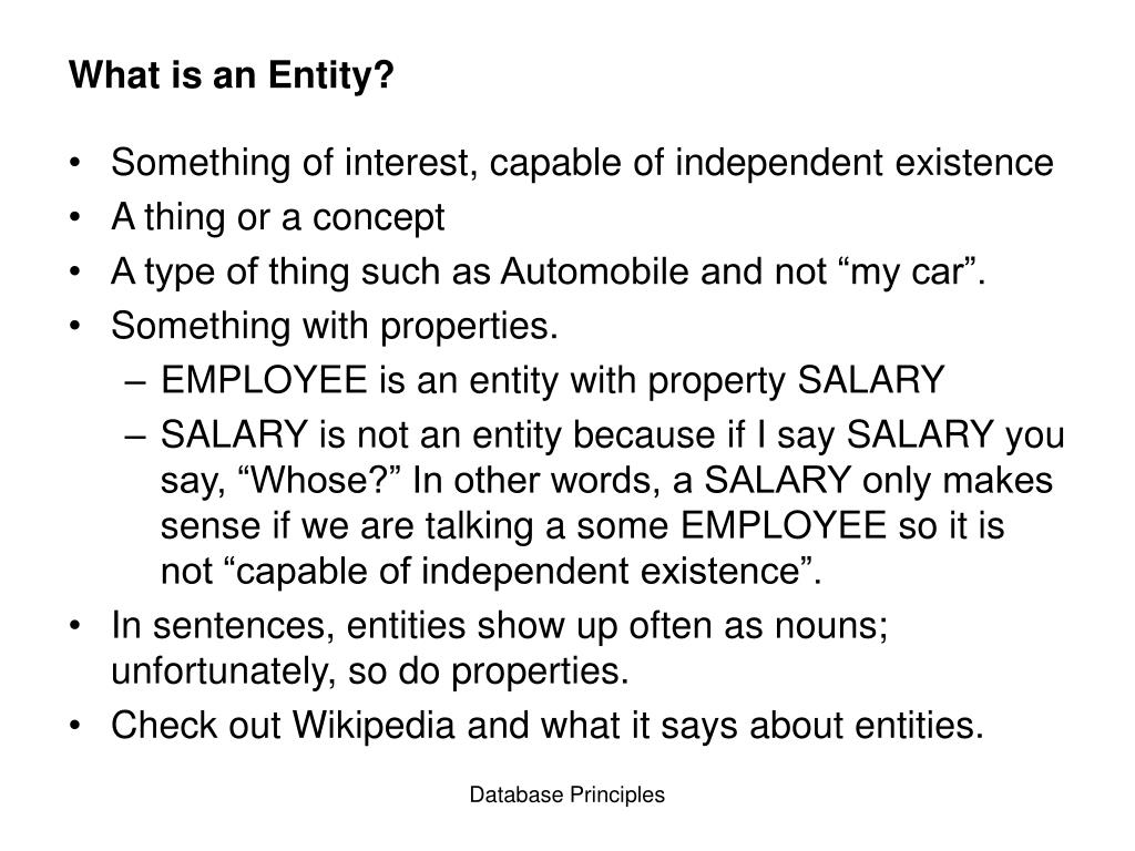 What is an Entity?