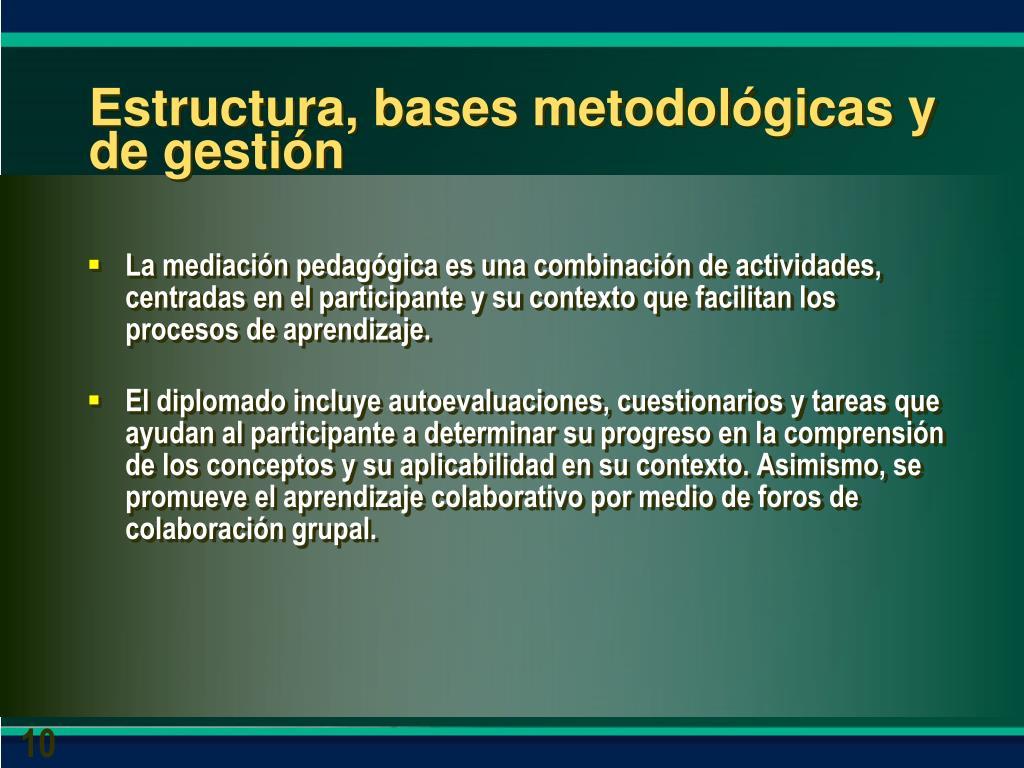 Estructura, bases metodológicas y de gestión