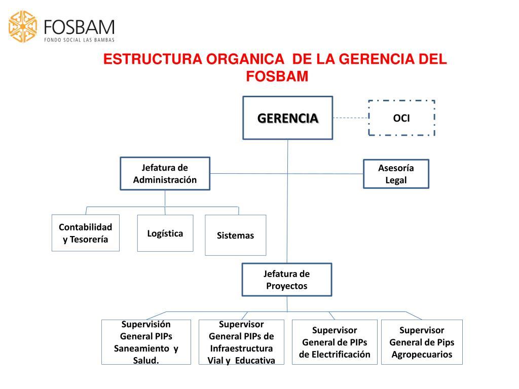 ESTRUCTURA ORGANICA  DE LA GERENCIA DEL