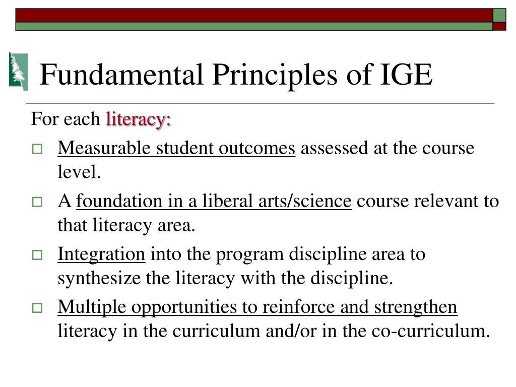 Fundamental Principles of IGE