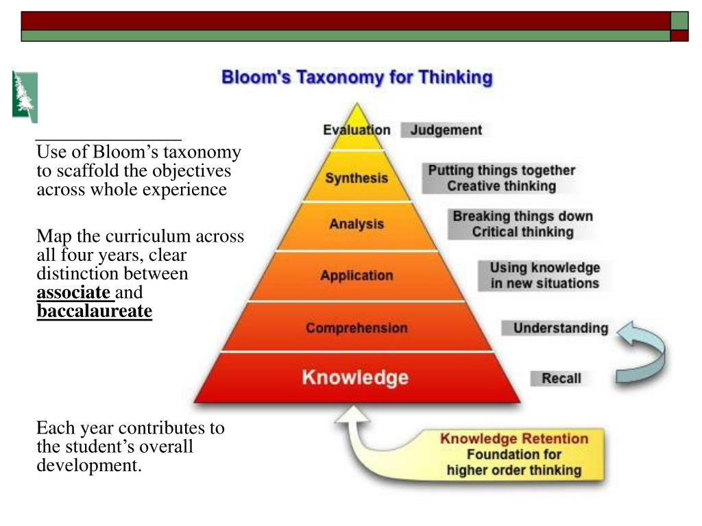 Use of Bloom's taxonomy to scaffold the objectives across whole experience