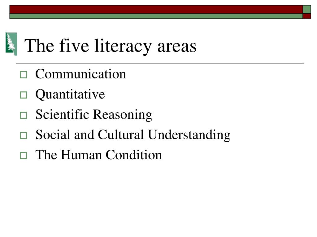 The five literacy areas