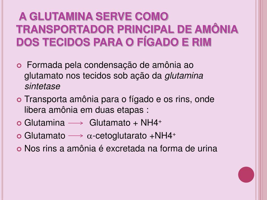 A GLUTAMINA SERVE COMO TRANSPORTADOR PRINCIPAL DE AMÔNIA DOS TECIDOS PARA O FÍGADO E RIM
