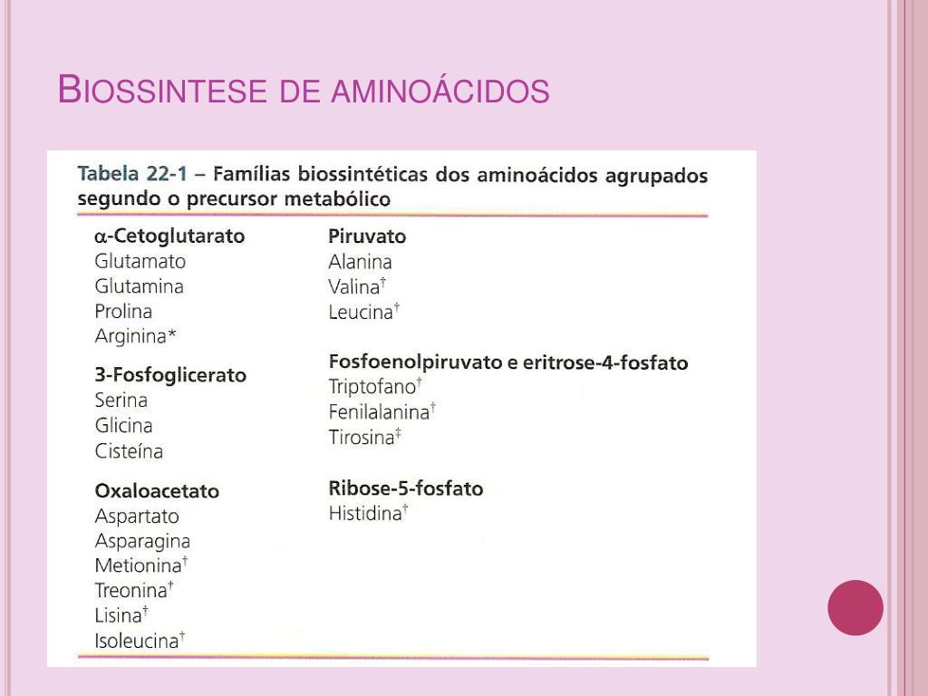 Biossintese de aminoácidos