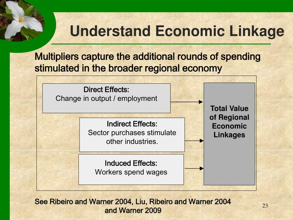 Total Value of Regional Economic Linkages