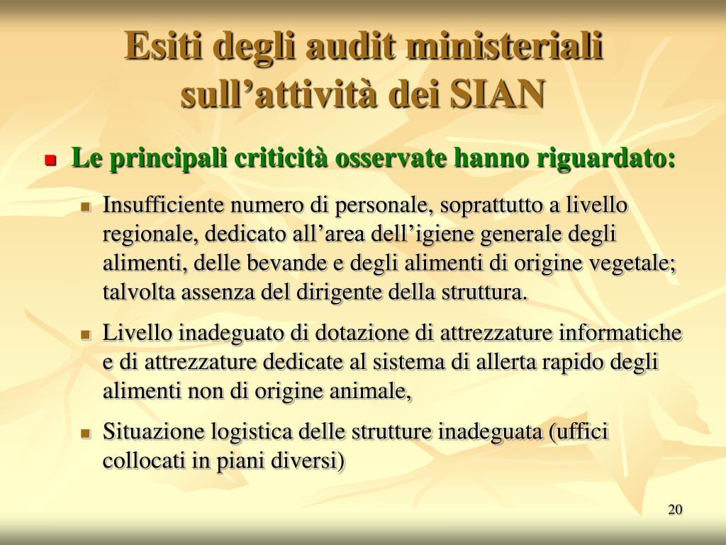 Esiti degli audit ministeriali sull'attività dei SIAN