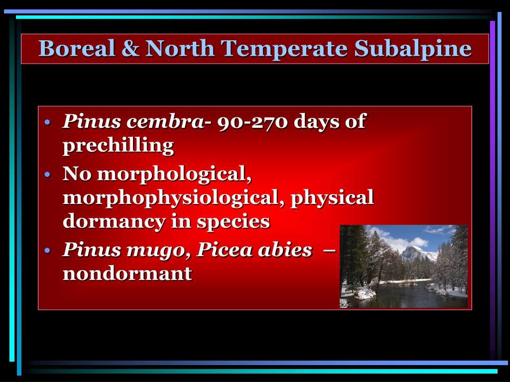 Boreal & North Temperate