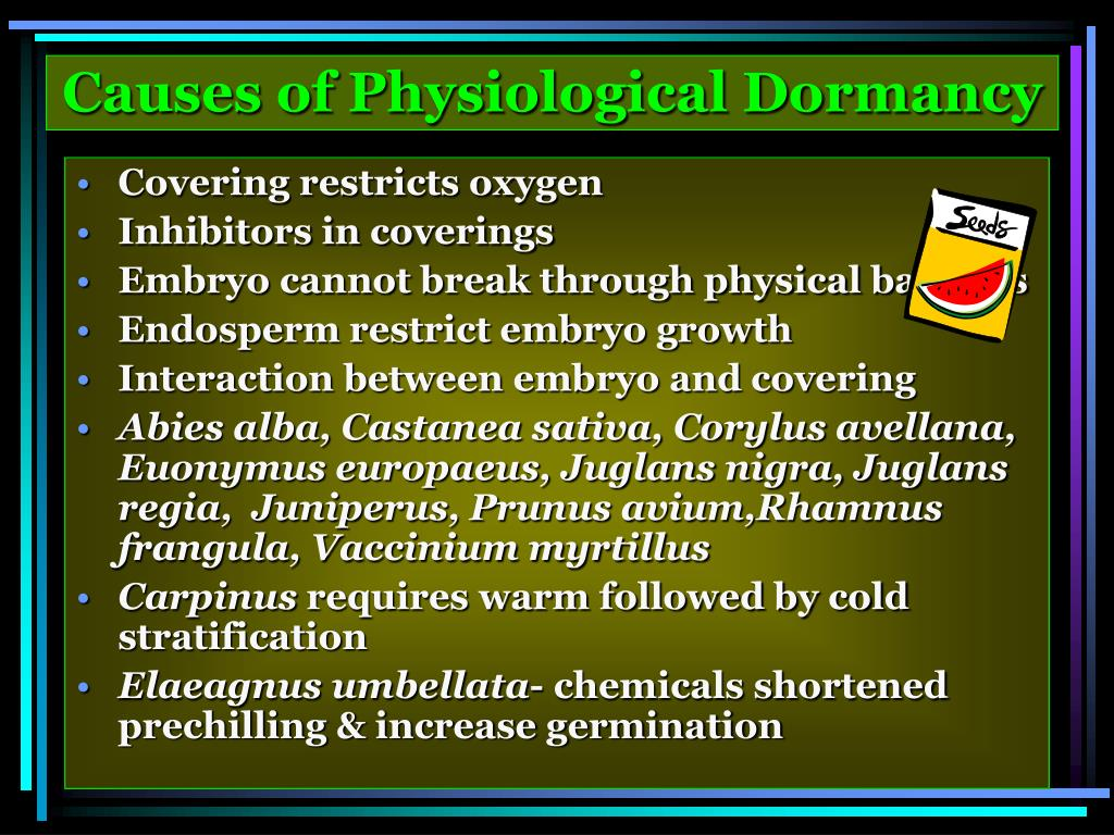 Causes of Physiological Dormancy