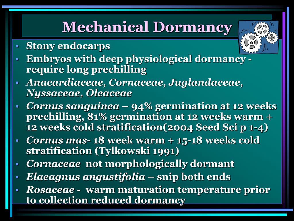 Mechanical Dormancy