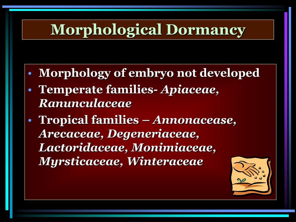 Morphological Dormancy