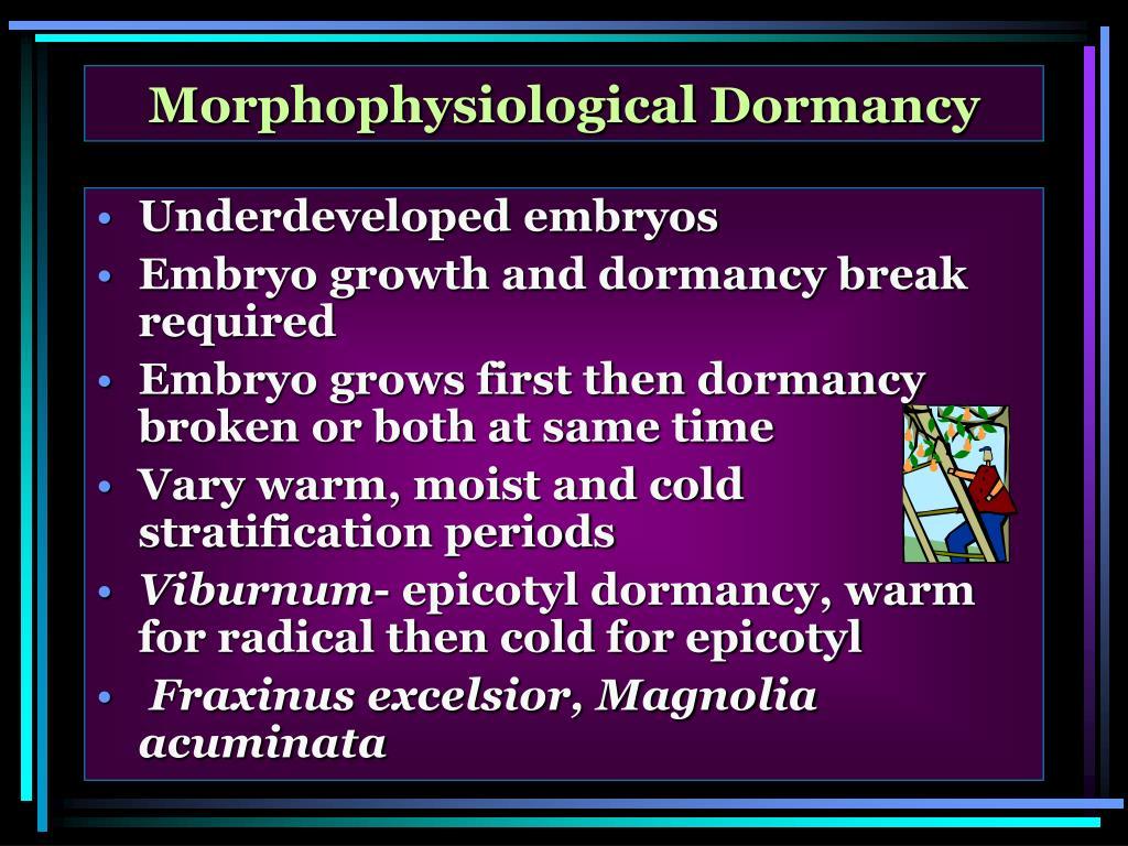 Morphophysiological Dormancy