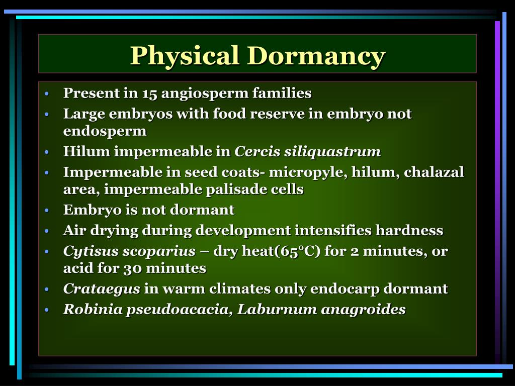 Physical Dormancy