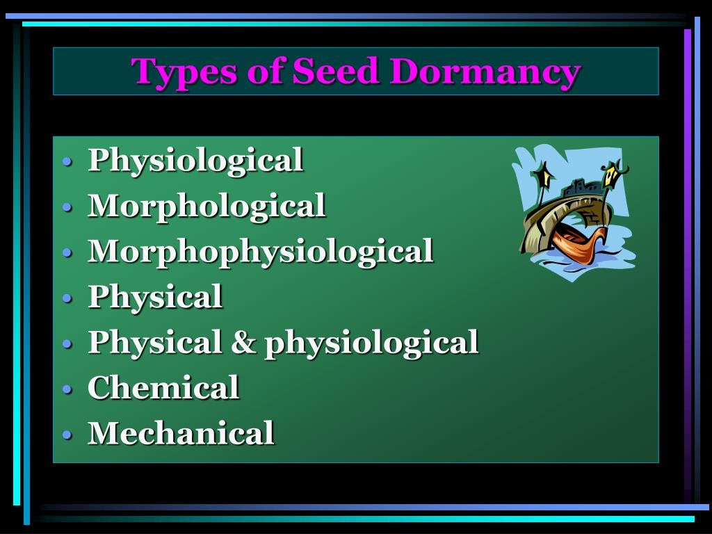 Types of Seed Dormancy