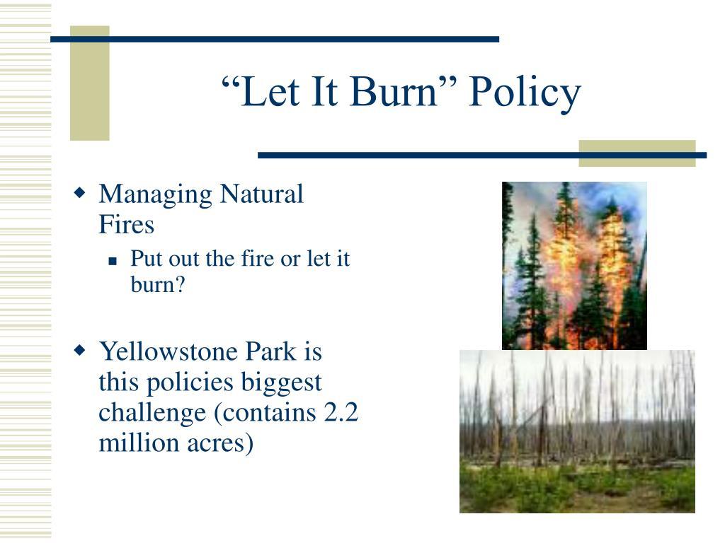 Managing Natural Fires