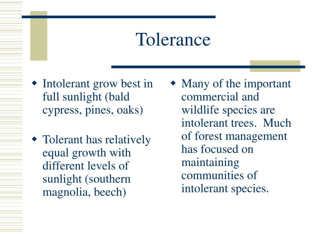 Intolerant grow best in full sunlight (bald cypress, pines, oaks)