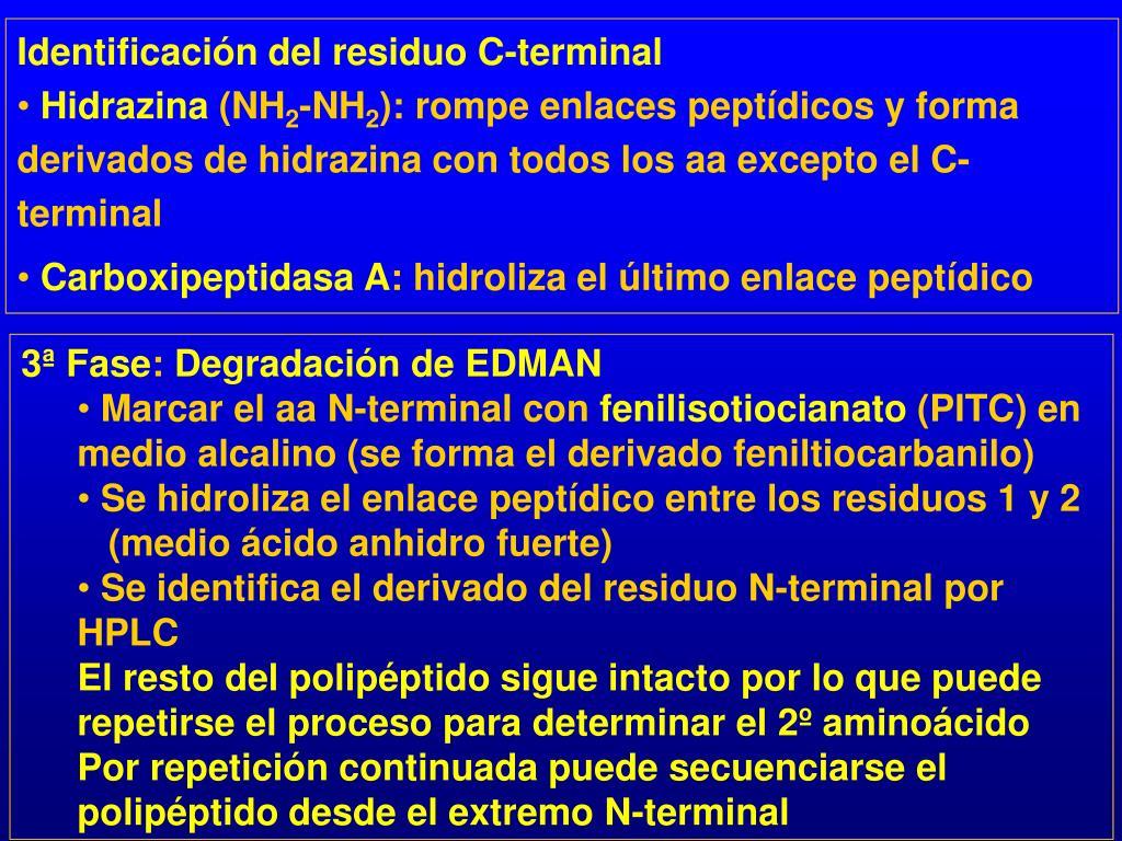 Identificación del residuo C-terminal