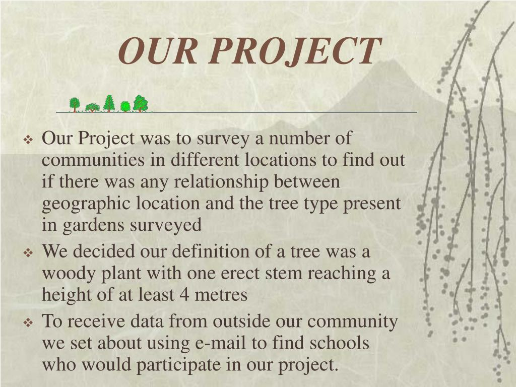 OUR PROJECT