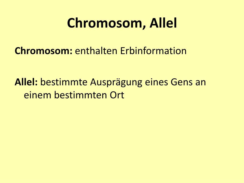 Chromosom, Allel