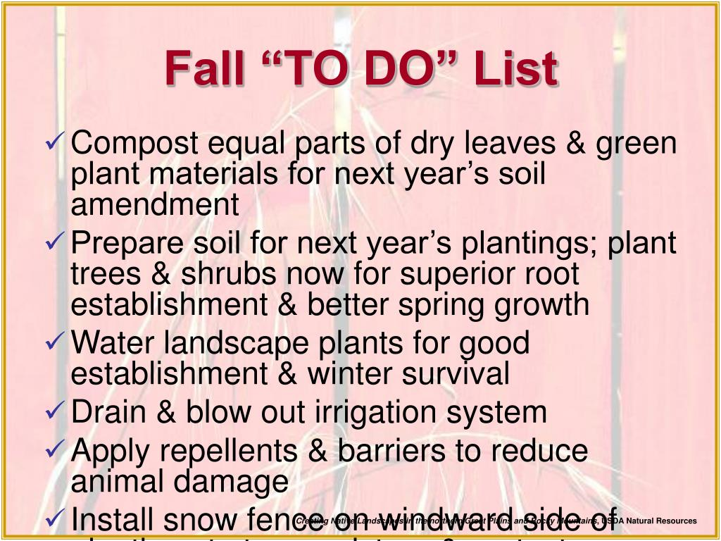 "Fall ""TO DO"" List"
