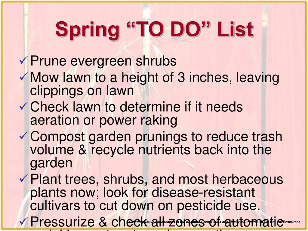 "Spring ""TO DO"" List"