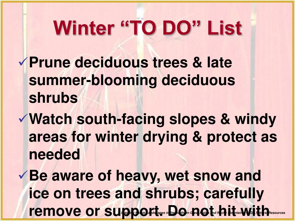 "Winter ""TO DO"" List"