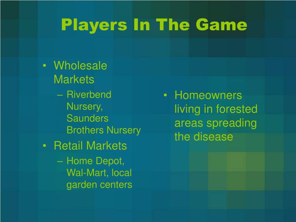 Wholesale Markets