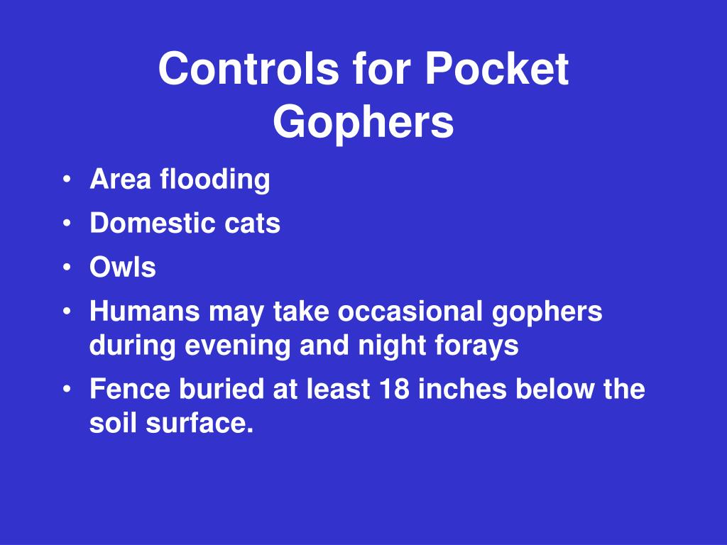 Controls for Pocket Gophers