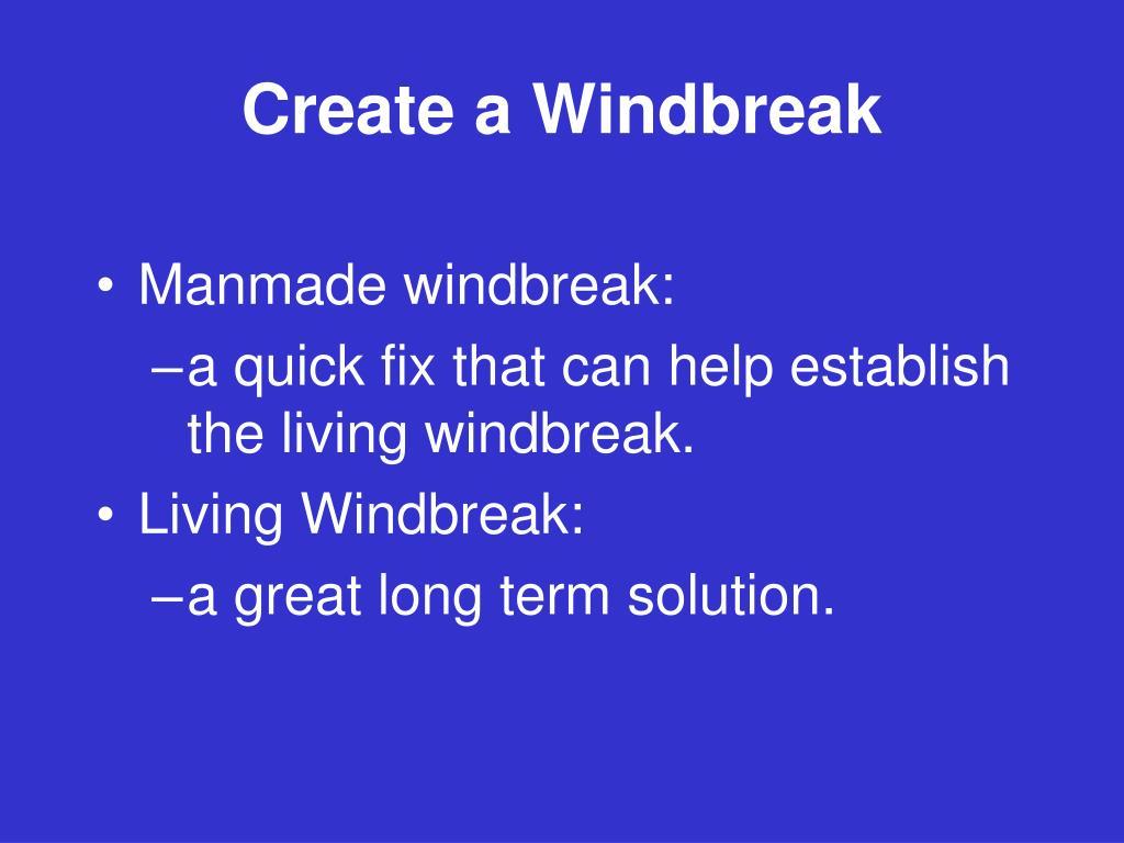 Create a Windbreak