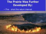 the prairie was further developed by