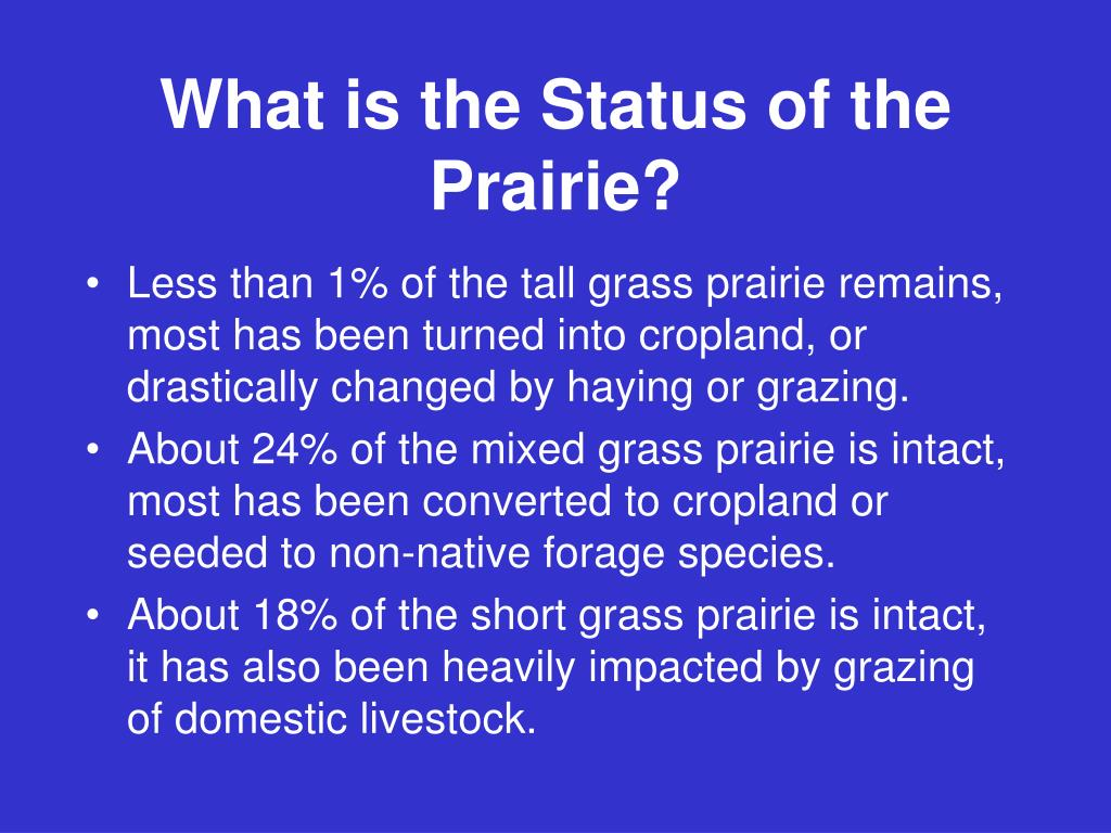 What is the Status of the Prairie?