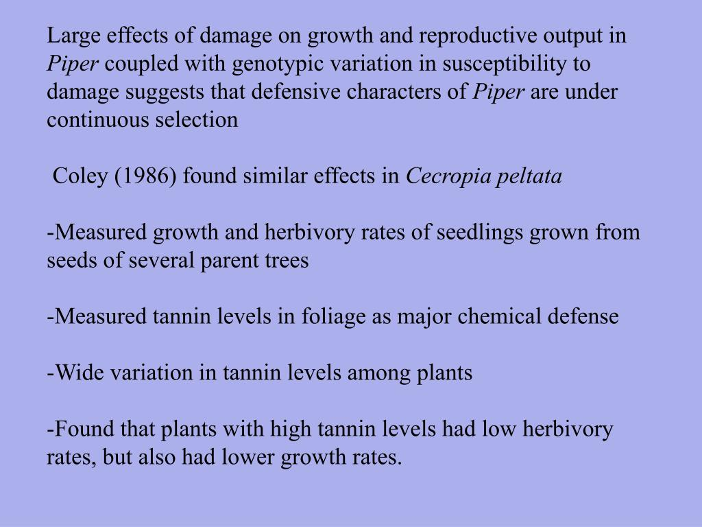 Large effects of damage on growth and reproductive output in