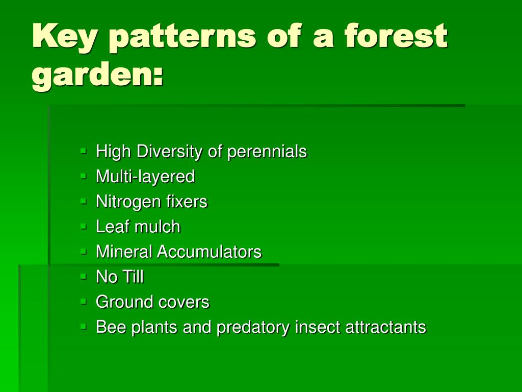 Key patterns of a forest garden: