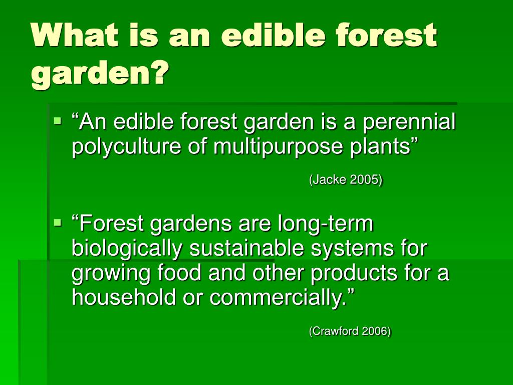 What is an edible forest garden?