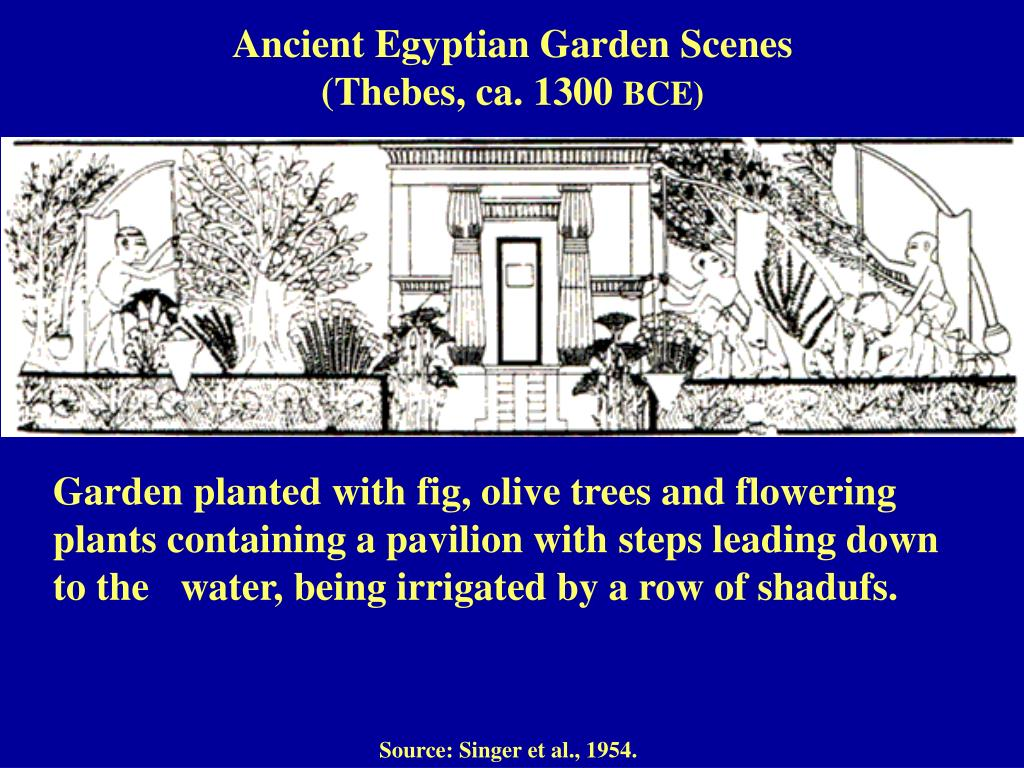 Ancient Egyptian Garden Scenes