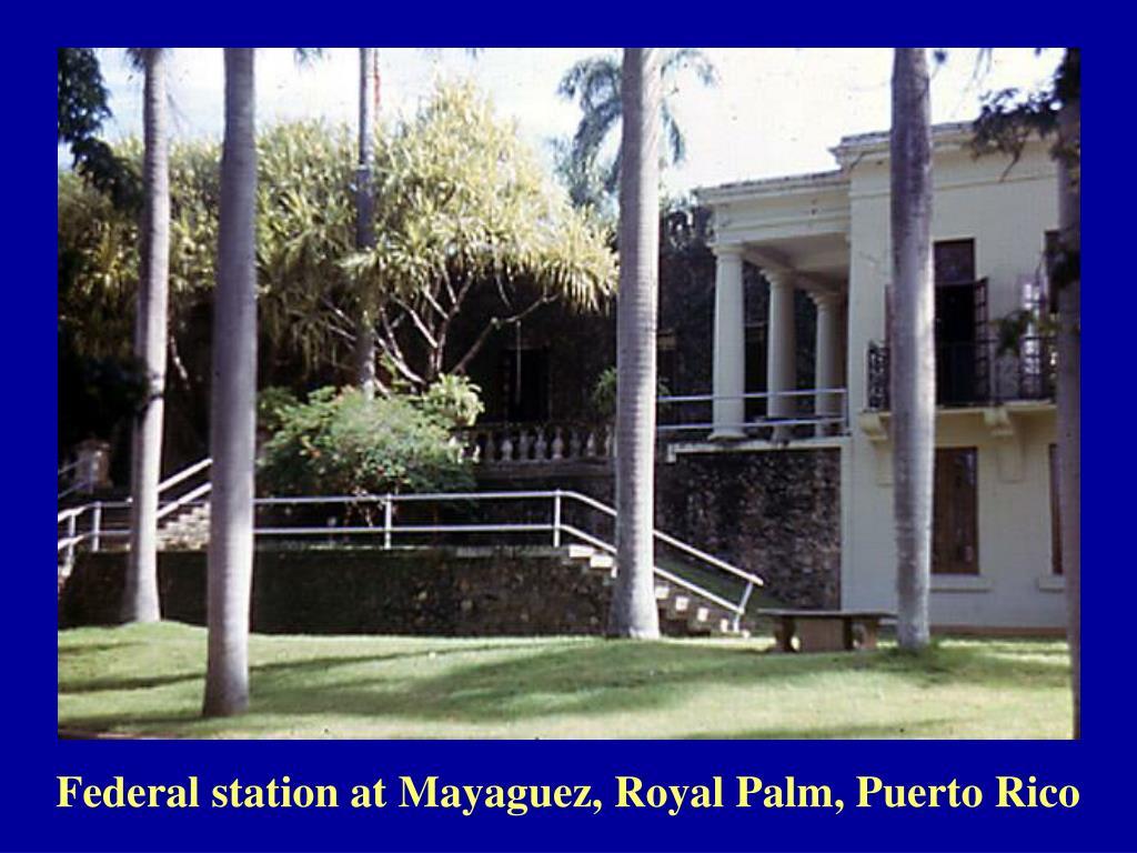 Federal station at Mayaguez, Royal Palm, Puerto Rico