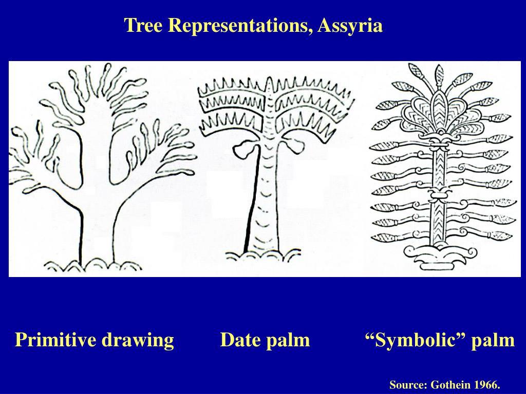 Tree Representations, Assyria